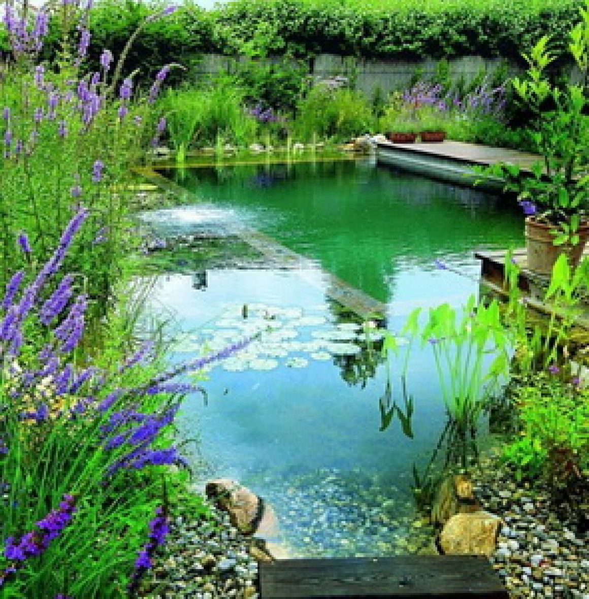 Бассейны и пруды